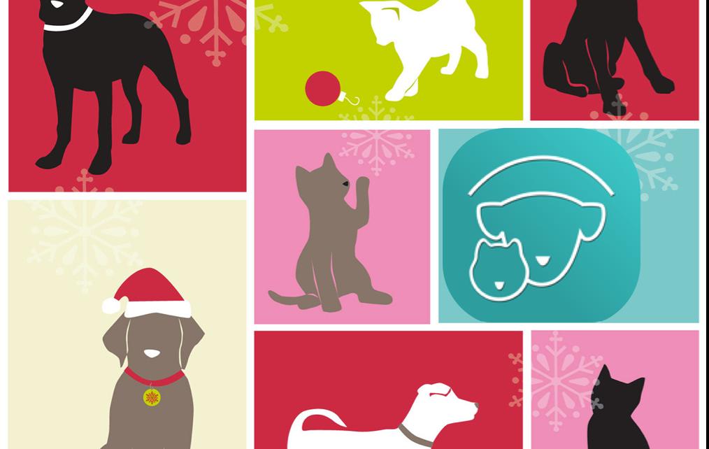 Christmas Card Petable