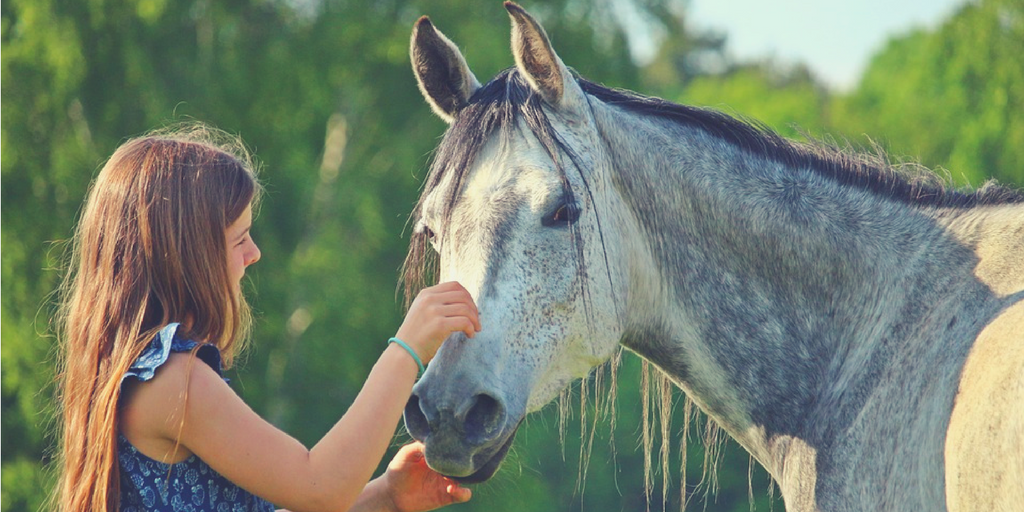 equine-assisted-psichoterapy