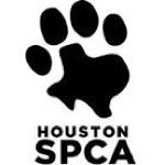 houston-spca