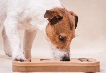 dog_puzzle